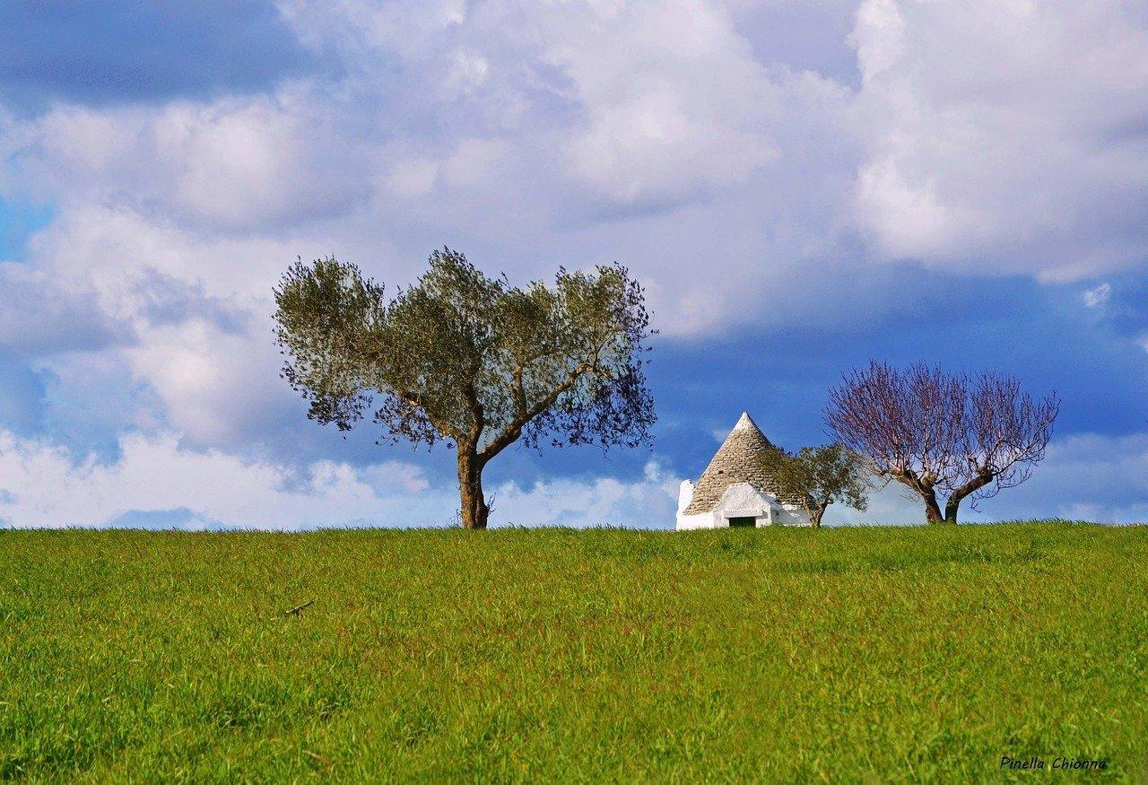 Trulli e olio di oliva in Puglia